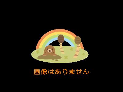 ★★【おやすみ】★★